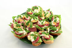 Plate of sandwiches. Central view at fresh sandwiches with different ingrdients Royalty Free Stock Photo