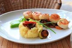 Plate of scallops cooked with its vegetables garnish in a french restaurant. Plate of scallops cooked with its vegetables garnish in a french gastronomic stock photo