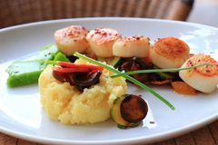 Plate of scallops cooked with its vegetables garnish in a french restaurant. Plate of scallops cooked with its vegetables garnish in a french gastronomic stock photography
