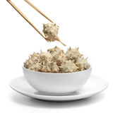 Plate of sea snails with chopsticks. Clean white plate of sea snails with chopsticks action Stock Images