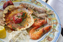 Plate with seafood Royalty Free Stock Photos