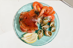 Plate of seafood Stock Image