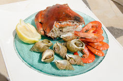 Plate of seafood Royalty Free Stock Images