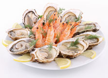 plate of shrimp and oyster Royalty Free Stock Image