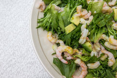 Plate of shrimp salad Royalty Free Stock Photography
