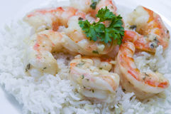 Plate of Shrimp Scampi. On white rice Royalty Free Stock Image