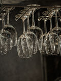 Clear wine glasses on hanging rack. In the resturant on black background Stock Photos
