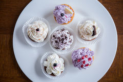 Plate with six cupcakes Stock Photos
