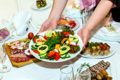 Plate with sliced vegetables in female hands Stock Image