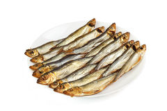 Plate with smoked Baltic sprat Royalty Free Stock Image