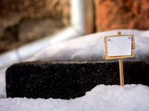 Plate in the snow Royalty Free Stock Photos