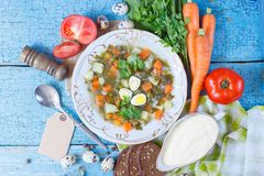Plate with sorrel soup, bread and different vegetables. Top view Stock Photos