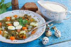 Plate with sorrel soup, bread and sour cream. Soft focus background Royalty Free Stock Images