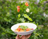 Plate of spaghetti marinara with fresh tomatoes and basil suspended in the air above it. stock photo