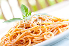 Plate of spaghetti in tomato sauce with basil Royalty Free Stock Image
