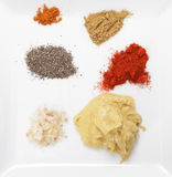 Plate of spices and seasonings Royalty Free Stock Images
