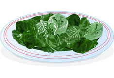Plate of spinach. Illustration of plate of spinach Stock Photo