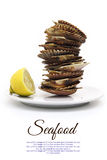 Plate with stack of scallops shells Royalty Free Stock Image