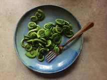 Plate of steamed fiddleheads tossed in butter and salt Royalty Free Stock Image