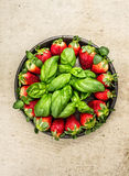 Plate with  strawberries and basil on rustic stone background Stock Image