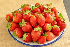 Plate of strawberries on textile background stock photos