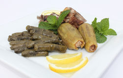 Plate of Stuffed Zucchini and Vine Leaves Royalty Free Stock Image