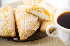 Plate with sweet pastries with sweet cheese and powdered sugar Royalty Free Stock Photography