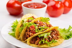 Plate with taco. And fresh tomatoes Royalty Free Stock Photos
