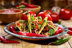 Plate of tacos Stock Images