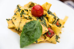 Plate of tagliatelle with tomatoes Stock Images