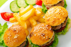Plate with tasty  burgers Royalty Free Stock Image