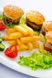 Plate with tasty  burgers Royalty Free Stock Photography