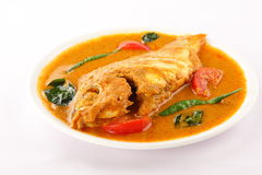 Plate of tasty fish curry, Royalty Free Stock Photography