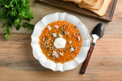 Plate with tasty lentil soup Stock Image