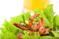 Plate with Tiger Prawns Stock Images