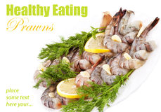 Plate with Tiger Prawns royalty free stock photo