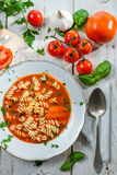 Plate of tomato soup made ​​of fresh tomatoes Royalty Free Stock Image
