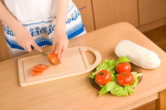 Plate with tomatos and lettuce Stock Photography