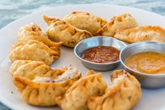 Plate of traditional momos. Stock Images