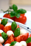 Plate of tricolore salad, Royalty Free Stock Photography