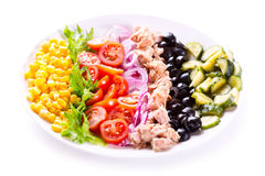 Plate of tuna salad with vegetables Stock Image