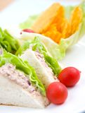 Plate of tuna sandwich with salad Royalty Free Stock Photography
