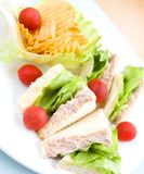 Plate of tuna sandwich with salad Stock Photography