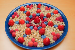 Plate with various berries Stock Photography