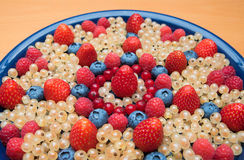 Plate with various berries, detail shot Stock Image