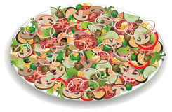 Plate with vegetable salad Stock Images
