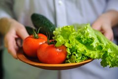 A plate of vegetable salad in the hands of the chef stock photos