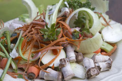 Plate of Vegetable Scraps Stock Image