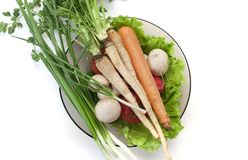Plate of vegetables Stock Images