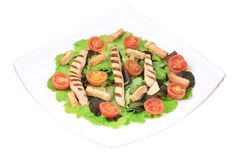 Plate with vegetables for caesar salad. Stock Image